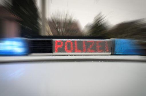 Mit täuschend echt aussehenden Spielzeug- und Luftdruckwaffen kommt es immer wieder zu Vorfällen – auch im Rems-Murr-Kreis (Symbolbild). Foto: Archiv (Polizei)