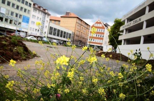 Auch die Blumen am Rand des Areals vermögen die Tristesse auf dem Platz am Züblin-Parkhaus nicht zu vertreiben. Foto: Ralf Recklies
